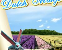 Голландский маджонг