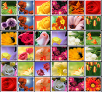 Маджонг Цветы (Цветочная страна)